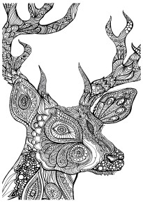 coloring-deer-zoom